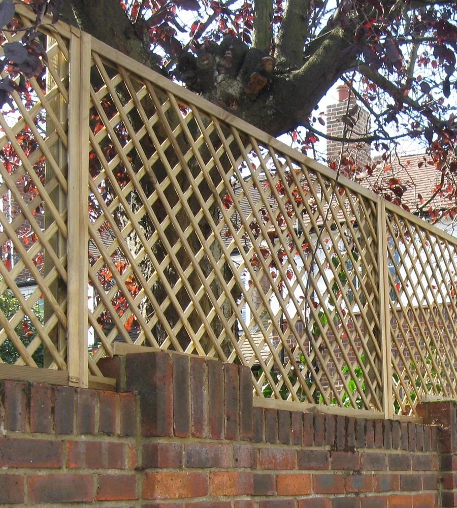 Polish Diamond trellis